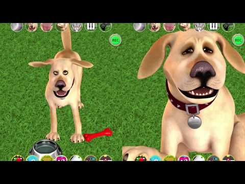 Talking John Dog: Funny Dog