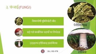 जीवों में विविधता - भाग १ (Diversity in Living Organisms - Part 1) - कक्षा 9 (Class 9) - Hindi