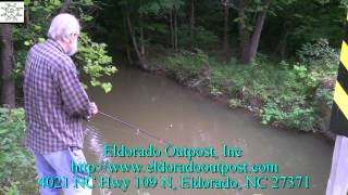 Roadside Creek Fishing