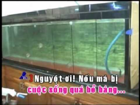 karaoke trich doan To Anh Nguyet-ca voi 545.wmv