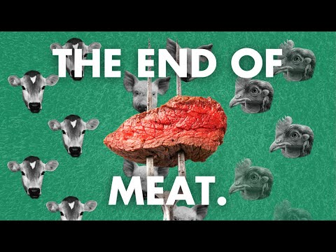 Veganism could save the planet. Here's why.
