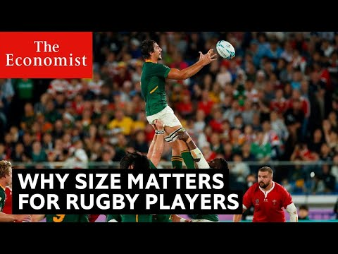 Rugby World Cup final: why size will matter   The Economist