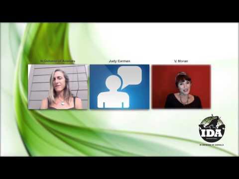 September Vegan Spirituality Online Gathering