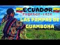 Video de Puyango
