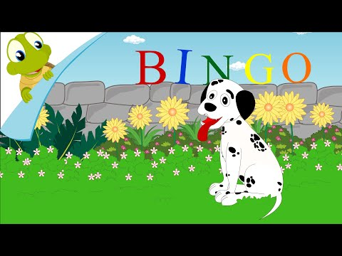 Old Macdonald Had A Dog And Bingo Was His Name O