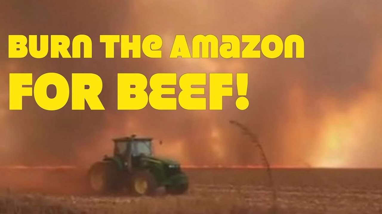 Amazon Set Ablaze By Cattle Farmers!
