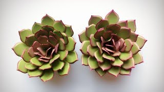 ABC TV | How To Make Succulent Paper Flower - Easy Craft Tutorial