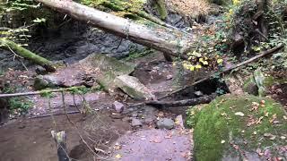 Die Hörschbachschlucht - vom vorderen zum hinteren Wasserfall