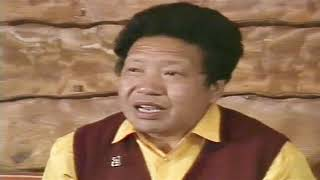 Akong Rinpoche - interview about ROKPA July 4th 1988