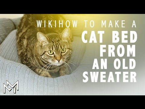 how-to-make-a-cat-and-dog-beds-of-sweaters-and-pillows