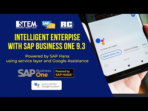 SAP Business One Support Google Assistant