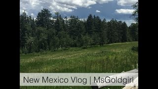 New Mexico Vacation Vlog | MsGoldgirl