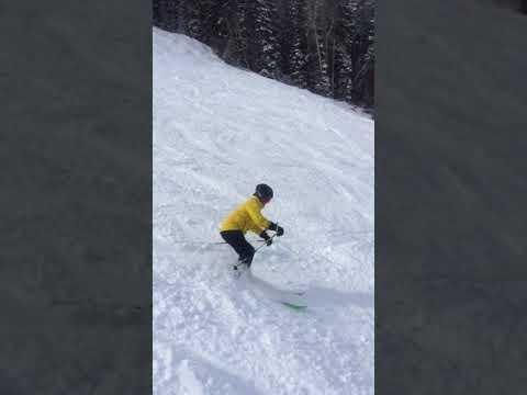 JBThree.com Snow Skiing Aspen 2018 - ShelleyF powder bumps at Ajax A1