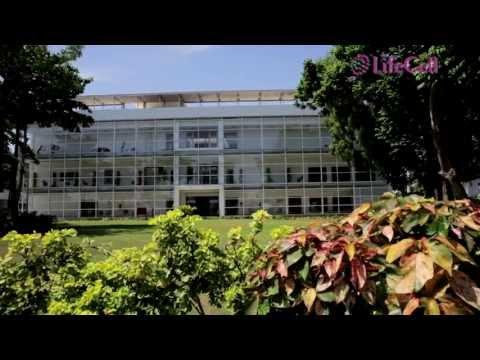 LifeCell - A stem cell preservation bank - Chennai & Gurgaon