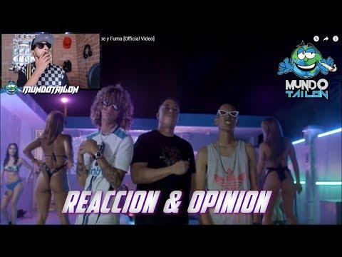Ele A El Dominio X Jon Z X Duran The Coach - Bebe y Fuma [Official Video] - REACCION