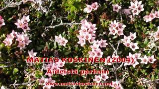 Matias Koskinen - Äideistä parhain. 2004