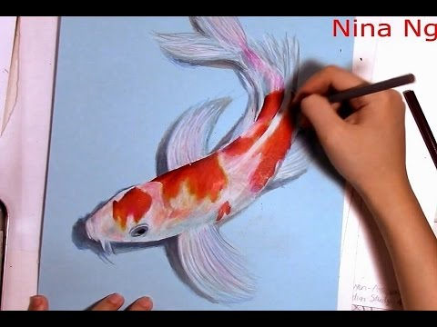 3D Art Drawing Koi Fish With Colored Pencil (Kohaku)