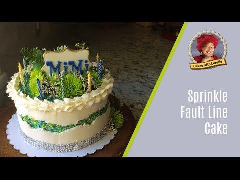 sprinkle-fault-line-cake-/-fresh-flowers-on-cake-tutorial