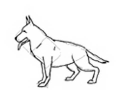 Como dibujar un perro raza Pastor Alemán - Dibujos de perros - YouTube