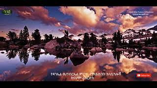 Non Stop Ethiopian Instrumental Music By Daniel W/gebriel ( የዳንኤል ወ/ገብርኤል ምርጥ ስራዎች 4 45 54