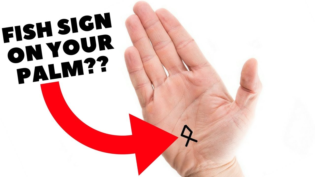 Do you have fish sign in your handspalmistry youtube do you have fish sign in your handspalmistry biocorpaavc
