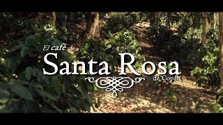 El Café de Santa Rosa de Copán