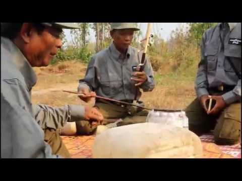 top-tradition-music-in-community-forest-||-សក់ក្រង