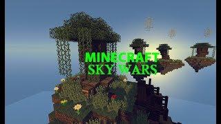 Minecraft Sky Wars #1