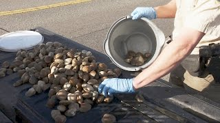 Group Busted Poaching Clams