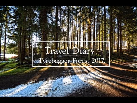 Scotland Forest Trip Aberdeen Tyrebagger 2017 - Travel Diary
