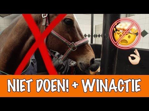 Doe dit NOOIT met paarden! | PaardenpraatTV