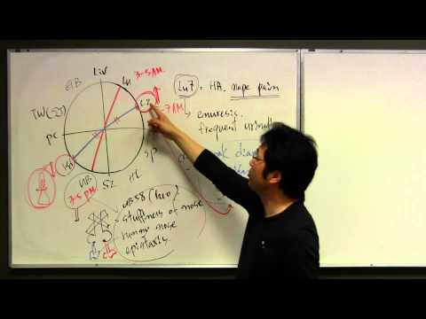Channel theory, acupuncture theory, circadian clock of meridian, yin&yang in acupuncture