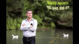 MARIUS ANGHELE - NU POT SPUNE CA NAM BANII