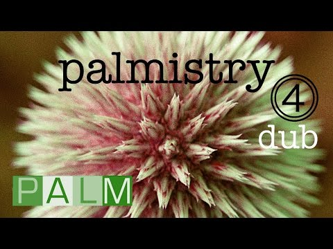 Palmistry Compilation Vol. 4 | One hour of Dub tracks from PALM Pictures feat. Sly & Robbie and more