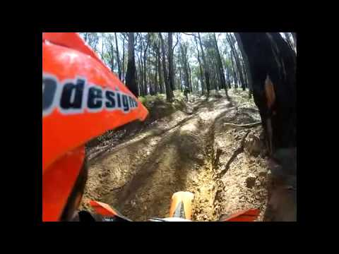 Toolangi Dirt Bike Tours