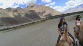 Nubra Valley - Hunder, Leh - Ladakh, India