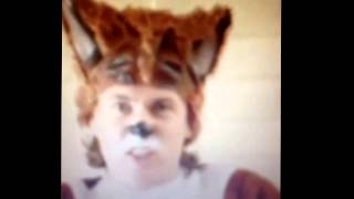 what does the fox say vine compilation