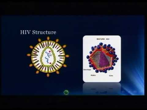 Lecture 30: Human Immunodeficiency Viruses