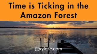 Gambar cover Time is Ticking in the Amazon Forest Royalty Free Music by Xylote.com