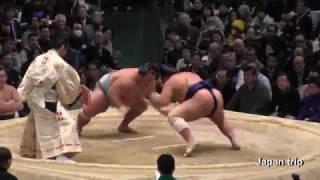2017大相撲春場所での琴勇輝 vs 栃煌山の取組。