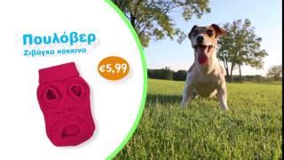 454f0d7aff3f JUMBO Σκύλος 4 Καμπάνια για PET