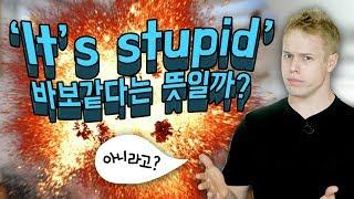 'It's stupid' : 혹시 바보 같다고 해석하시나요?