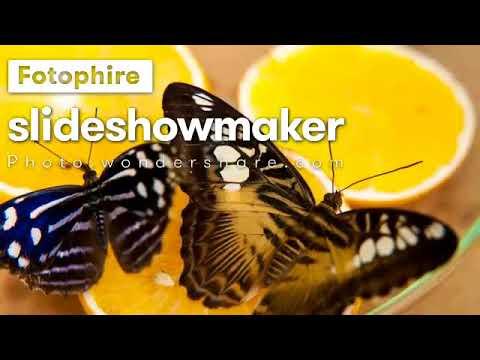 My movie from Wondershare Fotophire Slideshow Maker