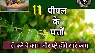 पीपल के 11 पत्तों का चमत्कार खुद देखें | Only 11 Peepal leaves to Solve All your. Financial Problems