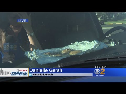 Danielle Gersh Bakes Cookies On The Dashboard Of CBS2's Mobile Weather Lab