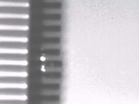 Vanadium dioxide micro gripper 2
