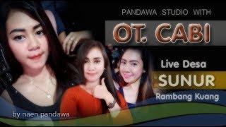 Gambar cover MIX ..DJ PUTRI AROGAN with OT.CABI DESA SUNUR RAMBANG KUANG