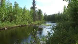 Жаркое лето 2011го - в тайгу на рыбалку / Hot Northern summer. Fishing on the taiga rivers
