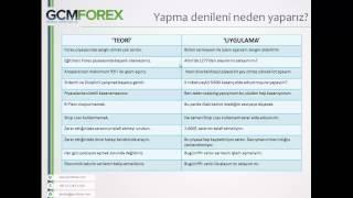 Yatırım Psikolojisi /  Kudret AYYILDIR / 27 Mayıs 2014