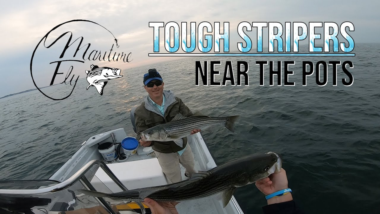 Weaving Through the Pots for Striped Bass - Fly and Light Tackle Fishing in Block Island Sound